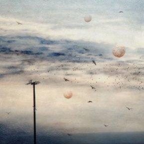 Three Moons - Diana Jane Art