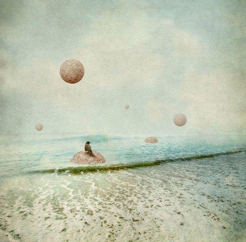 Diana Jane Art, photography, crow, beach, water, digital art, wall art, green, blue,
