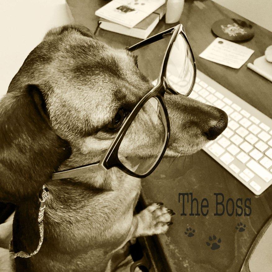 Margot-xx-The-Boss