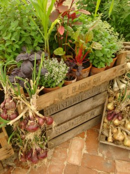 Onions and herbs