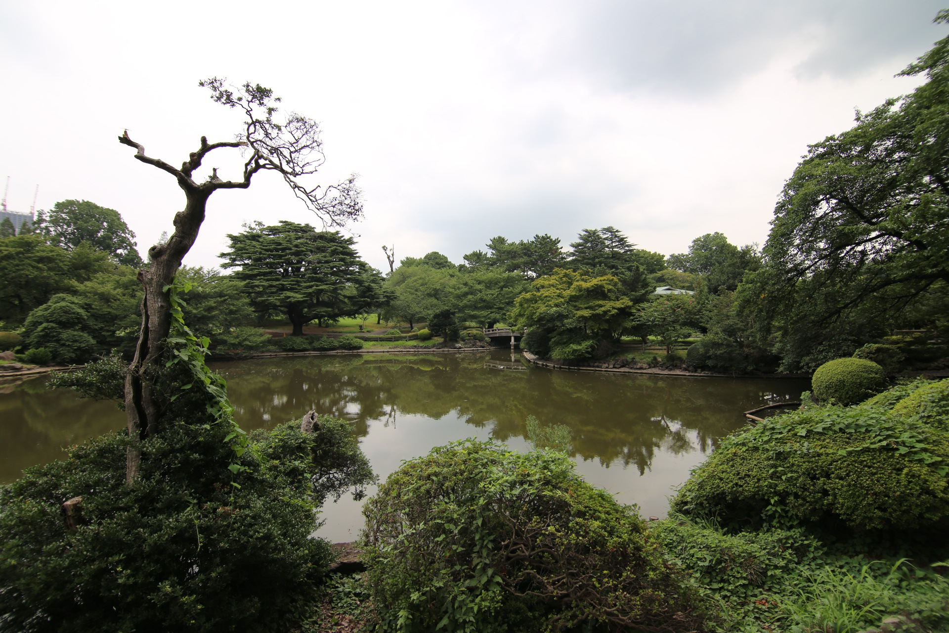Shinjuku Gyoen National Garden - 新宿御苑