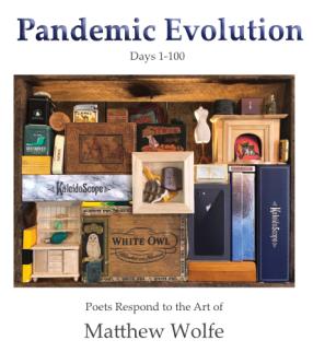 Pandemic Evolution