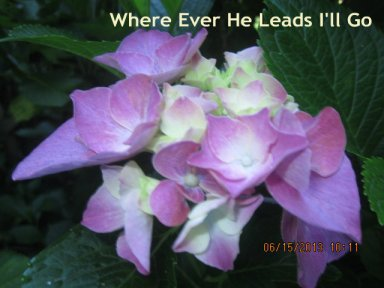 Where Ever He Leads