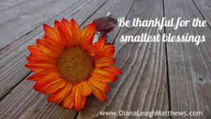 Be thankful for the smallest blessings