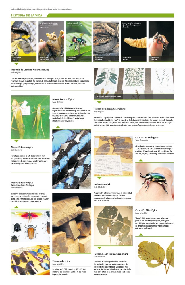 Museos y colecciones científicas de la Universidad Nacional, memoria y soporte del desarrollo de Colombia (3/5)