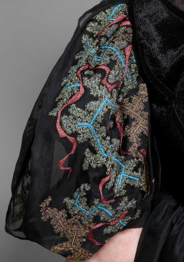 Robin Giddings detail of dress embroidery.