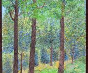 Landscape of Woodland Japan