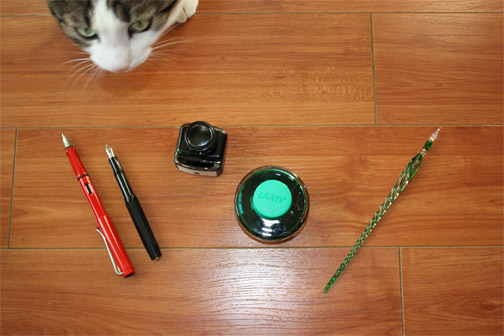 photo of cat and pens