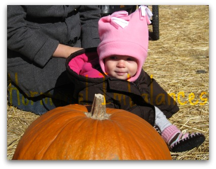 Pumpkin Patch and Sneakiness
