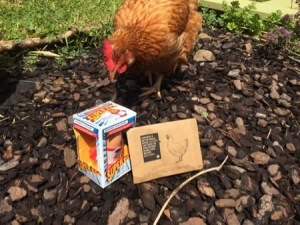 Ingrid the chicken looking at her present: a super-hero themed novelty egg cup and a card.