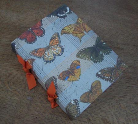 butterflies_closed.jpg