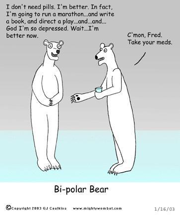 polar1.jpg