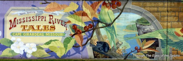 First of the murals on history of Cape Girardeau, Missouri.  The Hawthorne plant with brilliant blossoms and bright red berries became the Missouri state flower.  The Carolina parakeet, once prevalent in the river valley, vanished by 1900.  The last member of this species died in 1918 at the Cincinnati zoo.