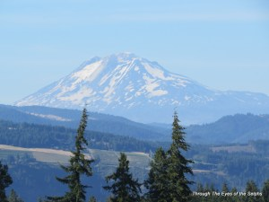 Zoomed view of Mt Adams in Washington