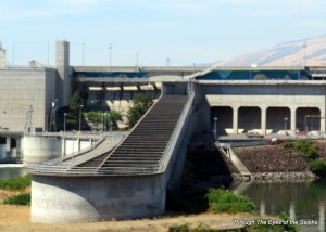 Exterior view of the Dalles Dam fish ladder