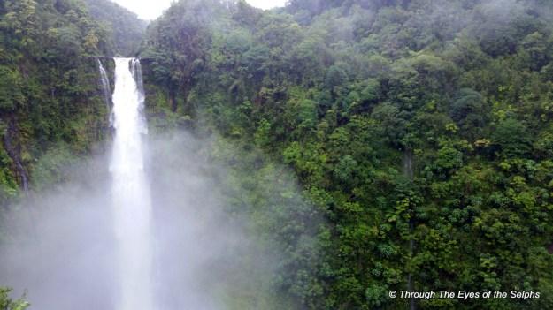 Widescreen view of Akaka Falls, 422 feet tall