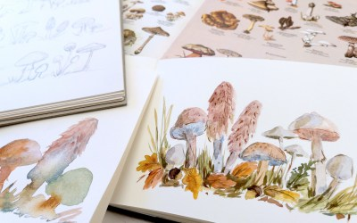 How to Paint Watercolor Mushrooms in a Woodland Setting
