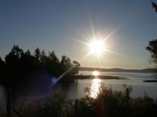 bright_morning_sun
