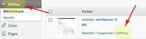 articles-medias