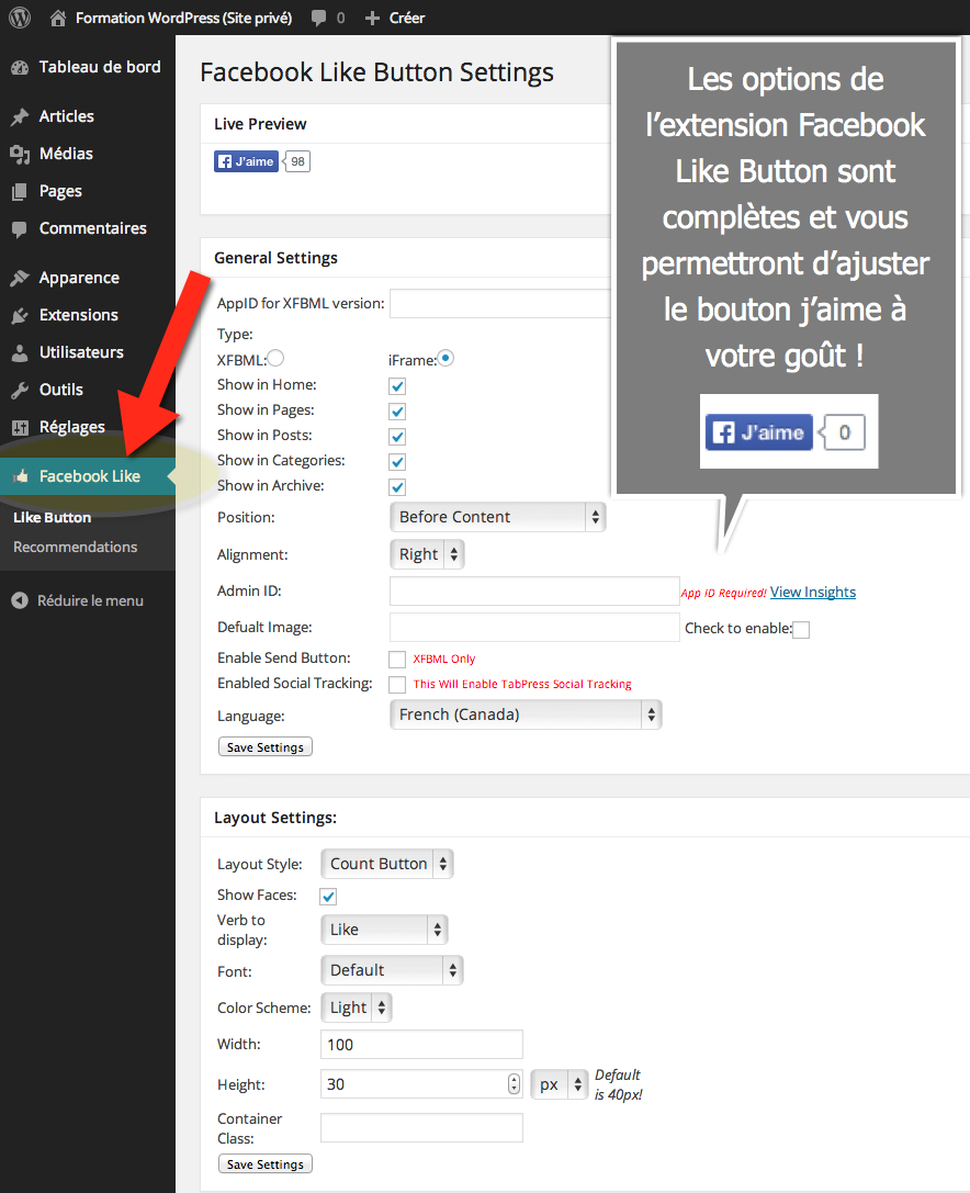 facebook-like-button-ahmed-hussein-wordpress