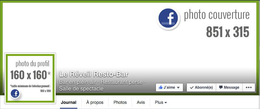 facebook-diane-bourque-dimensions-page