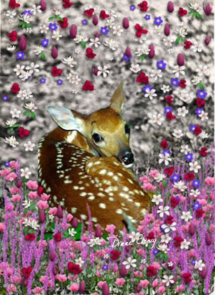 Wordless Wednesday - Bambi in Flowers II