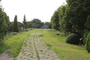 rock-path-korea