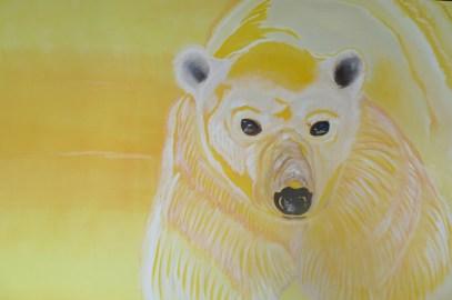 Spring Sunshine Polar Bear Churchill 40x60