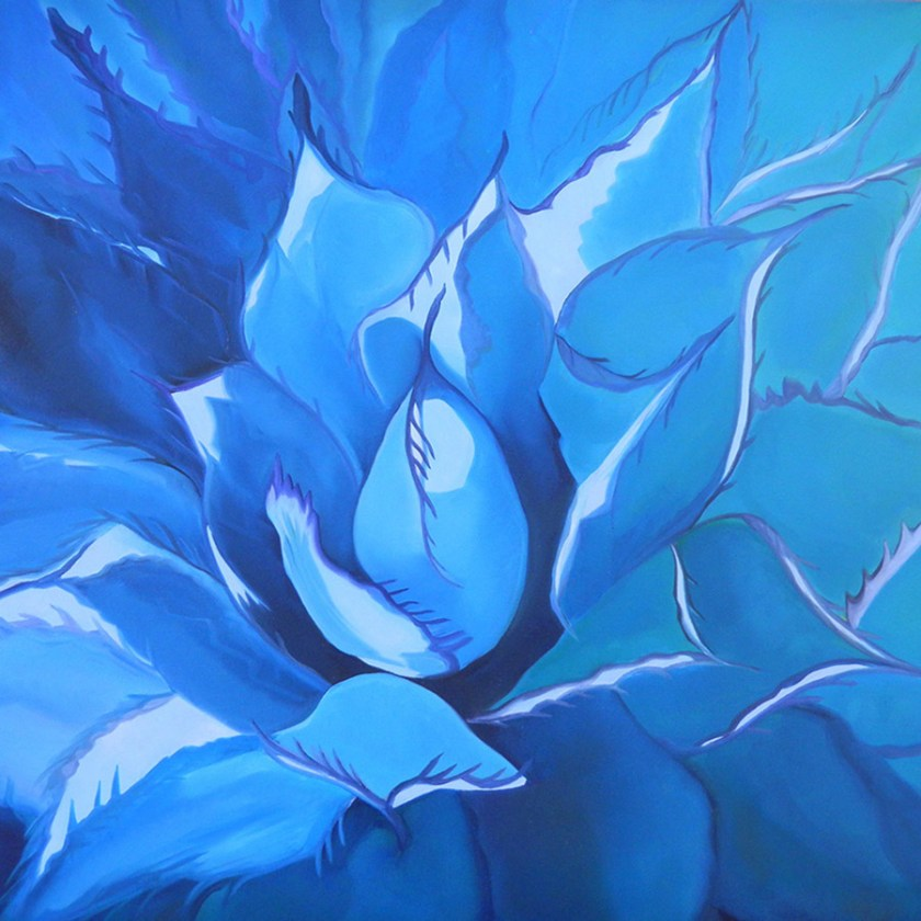 Blue-Agave-36x36