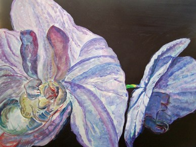 Purple Face-Off 36x70