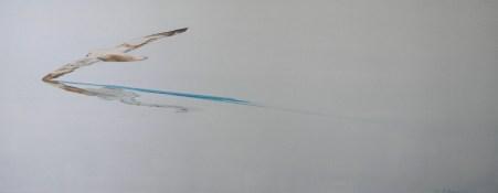 Kittiwake Kiting Svalbard 24x60