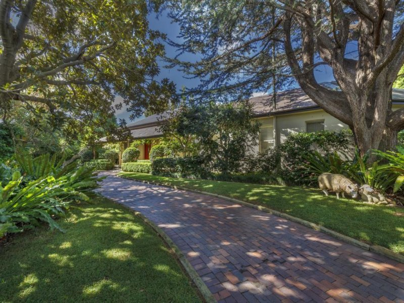 Leafy privacy in established landscaped garden