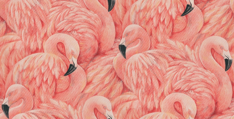Flamingo Wallpaper From The Albany Wow 2017 Collection
