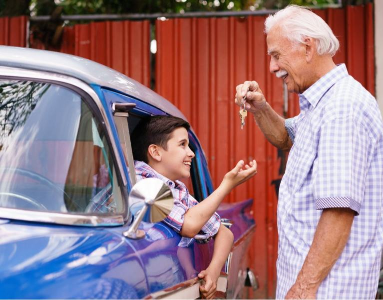 driving lessons and instructor training