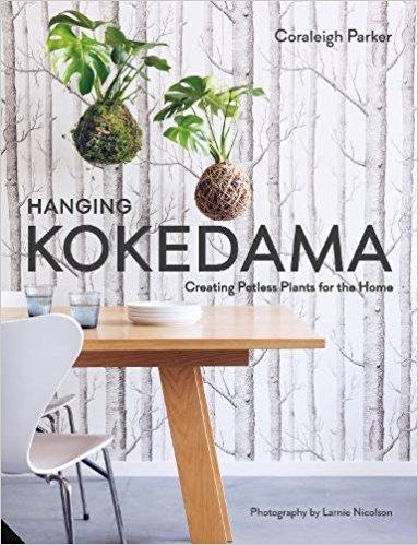 Hanging Kokedama Potless Plants