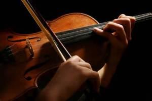 violin pic