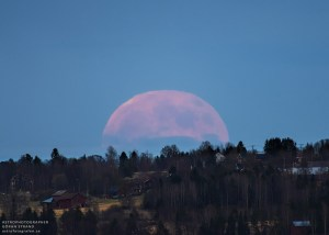Strawberry moon 1