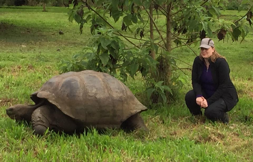 Giant tortoise, normal woman
