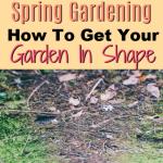 Spring Gardening:  How To Get Your Garden In Shape