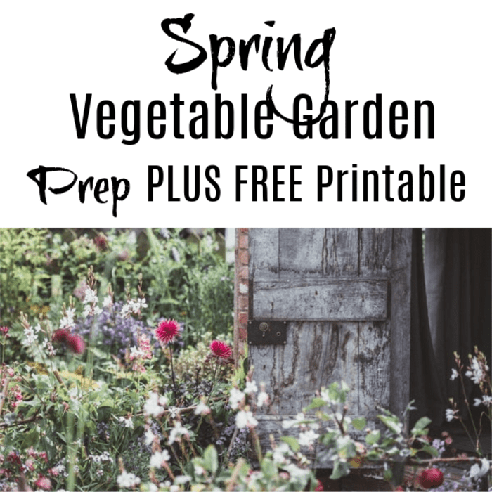 Spring Vegetable Garden Prep PLUS FREE Printable!