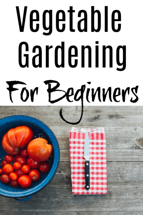 Want to start Vegetable Gardening?   Feed your family from your own garden! Vegetable Gardening For Beginners will show you how to get started quickly & easily!