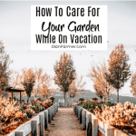 How To Care For Your Garden While On Vacation