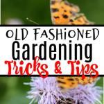 Old Fashioned Gardening Tips & Tricks