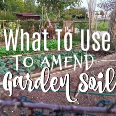 What Are Soil Amendments (6)
