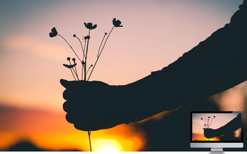 #14. Hand Flowers Silhouette Wallpaper