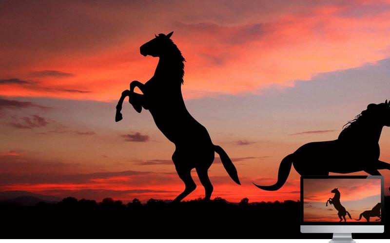 #2. Horse Silhouette Shadow Sunset Wallpaper
