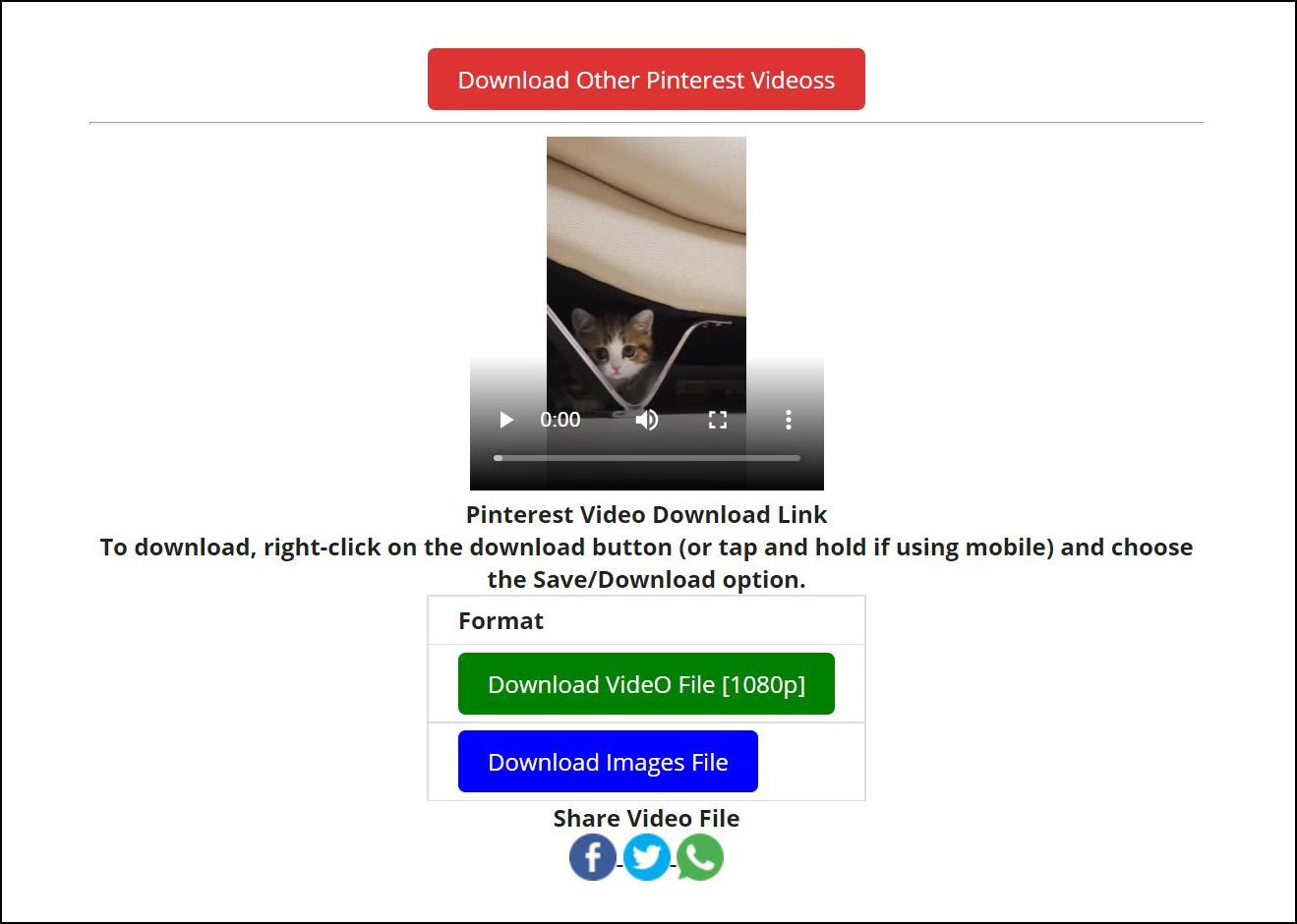 2 Download video Pinterest 1080p HD