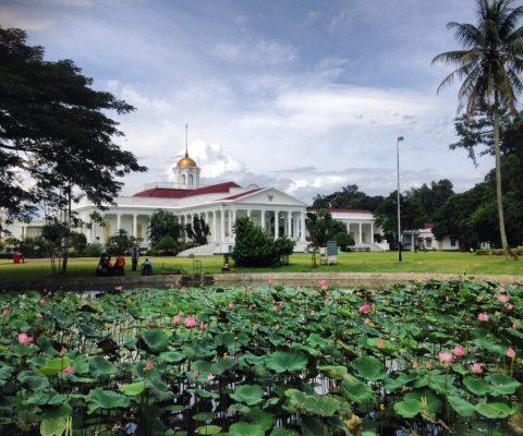 4 Spot Paling Instagrammable di Kebun Raya Bogor