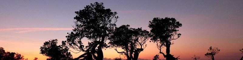 Exotic Sumba (2): Eksotisme Mbawana Hingga Tenun Ikat Sumba
