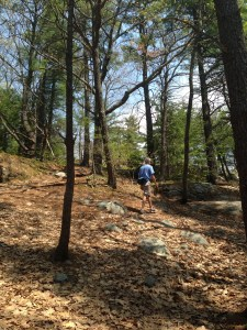 The climb up to Second Hill,   after turning off the Porcupine Trail.  The Butterfly Loop is another trail that climbs along the ridge of Second Hill and through forest, abandoned fields, and along a talus slope. A good option for a future Mother's Day.